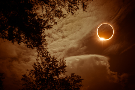 Phénomène naturel scientifique incroyable. La lune couvrant le soleil. Éclipse solaire totale avec effet de bague en diamant brillant sur le ciel au-dessus des silhouettes d'arbres. Fond de nature sérénité.