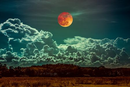Beautiful countryside area at night. Attractive red blood moon on dark sky with cloudy above silhouettes of trees. Serenity nature background. The moon taken with my camera. Stock Photo
