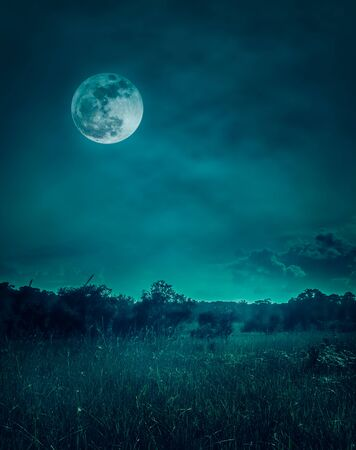 Landscape of dark night sky with clouds. Beautiful bright full moon above wilderness area in forest, serenity nature background. Outdoors at nighttime. The moon taken with my own camera.