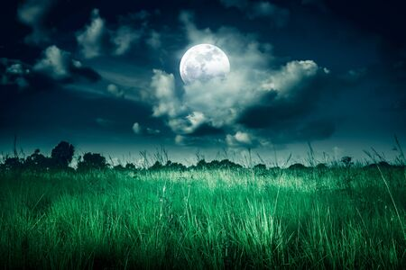 Landscape of night sky with clouds and full moon behind partial cloudy above  wilderness area in forest. Serenity background. The moon were NOT furnished by NASA.