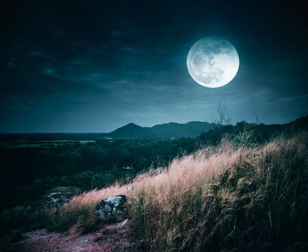 Landscape of dark night sky with clouds. Beautiful bright full moon above wilderness area in forest. Country road through fields of the countryside at nighttime. Serenity nature background. Stock Photo