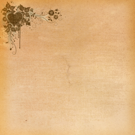 Grunge paper with floral corner  photo