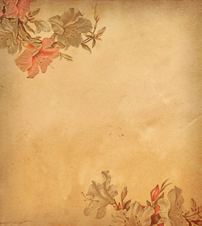 Vintage paper background  photo