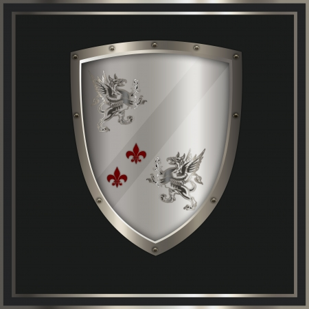 Heraldic shield  photo