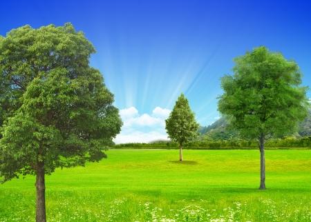 photoshop: Creative landscape in photoshop creations