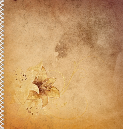 Vintage floral background Stock Photo - 14463494