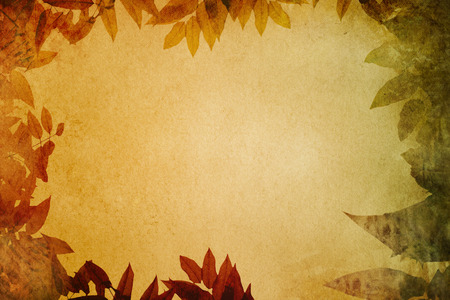Grunge paper with autumn leaves vignette for the design. Natural grunge paper texture. photo