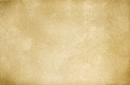papyrus: Old grunge paper background for the design. Stock Photo
