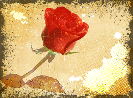 Old-fashioned floral background with red rose and abstract grunge patterns. photo