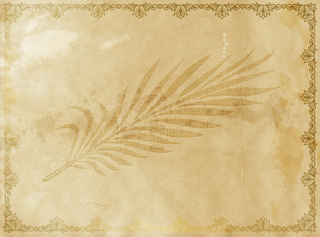 palm branch: Grunge old paper background with palm branch and decorative vintage border.