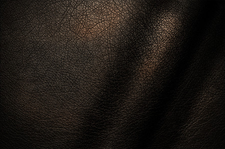 leather coat: Natural texture of dark leather for the design.