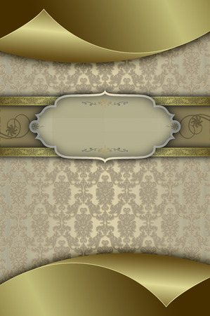 coverbook: Decorative vintage background with elegant patterns and frame for the text.