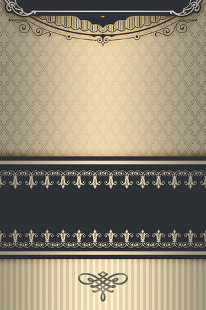 coverbook: Vintage background with decorative border and ornaments. Cover-book or vintage invitation card design. Stock Photo