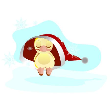 sleeps: Frozen duckling sleeps in a hat. Santa Claus hat.