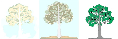 Ornamental tree in three versions. A tree with a book. Vector