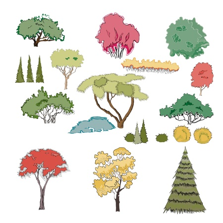 Graphical representation of trees and shrubs  A set of plants  Stock Vector - 13034330