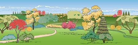 Graphic representation of the landscape  Summer landscape  Vector