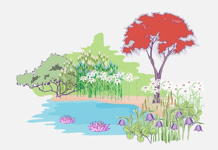 The picturesque area near the pond  Landscaping area near the water  Flower Garden with maple Stock Vector - 13034326