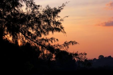 Beautiful sunset of the beach Stock Photo