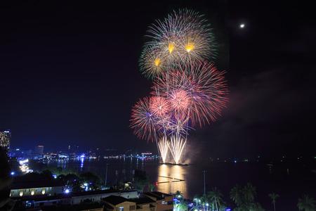 light up: Fuochi d'artificio illuminano il cielo notturno