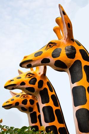 head model of Giraffa camelopardalis three head Imagens