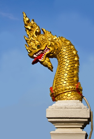 Golden Naga head photo
