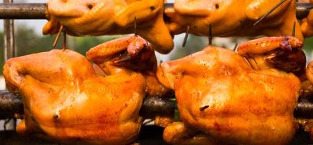 pollo rostizado: Rotación de pollo asado, pero no cocidos.