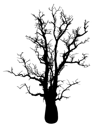 horribly: Isolate the silhouette of a tree with no leaves in the solitude is horribly spooky  Stock Photo