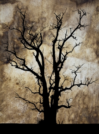 Abstract background silhouette of a dead tree in the drumhead  photo