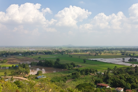 General view of the housing with the typical rice farming in rural Thailand  photo