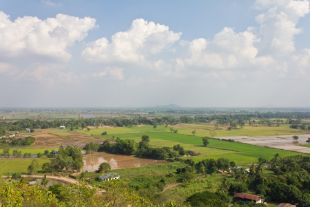 General view of the housing with the typical rice farming in rural Thailand Stock Photo - 16849048