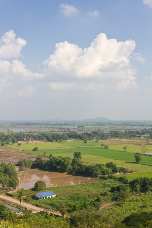 General view of the housing with the typical rice farming in rural Thailand Stock Photo - 16849049