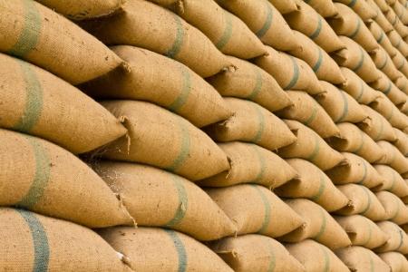 Vieux sacs de chanvre contenant du riz placés profondément empilés dans une rangée de maintenir Banque d'images - 20528503