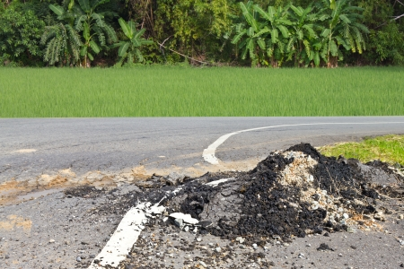 Demolished asphalt road surface close to the rice fields and banana plantations  photo