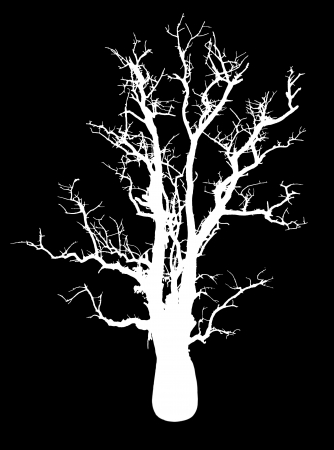 Isolate the silhouette of a tree with no leaves in the solitude is horribly spooky