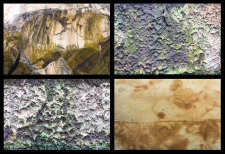 moss: Stain with a white cloth on the rock and moss on the wall