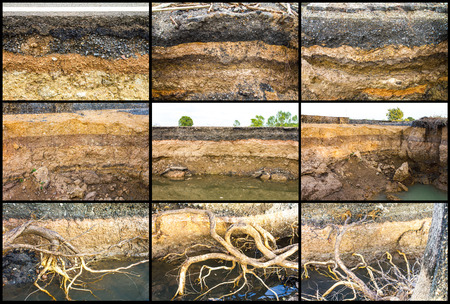 soil erosion: Collection of soil under the road to water erosion as the roots