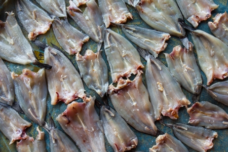 common snakehead: Thailand dried fish on the table concrete paved with blue blinds