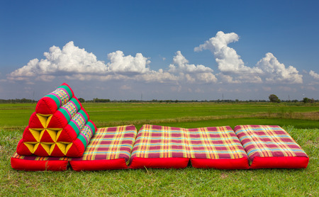 Foldable corrugated triangular pillow to rest near the fields  photo