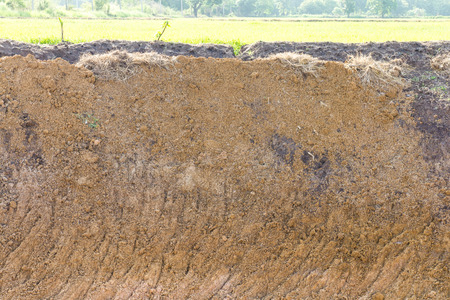 beneath the surface: Background of the basement was excavated paddy fields as a backdrop