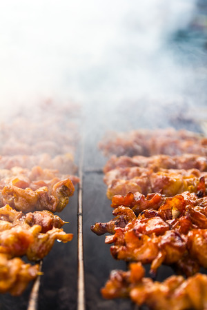 Close-up of chicken pieces grilled on skewers with smoke steel  photo