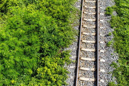 View above the railroad tracks with grass growing on the side  photo
