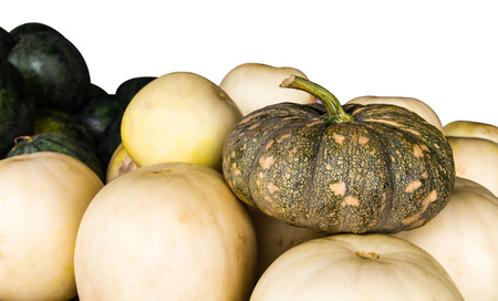 differ: Place the pumpkin on a pile of cantaloupe, which differ in abundance. Stock Photo