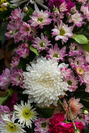 Little purple flowers and white chrysanthemums with a beautiful white. photo