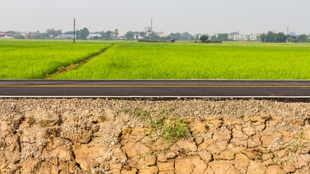 rice mill: Cracked ground side of the road, which is rice and mill in the background.