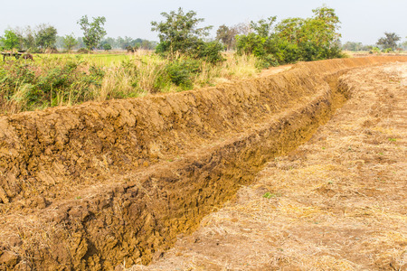 trenching: Large trench dug in the ground rice Thailand to store water for farming. Stock Photo