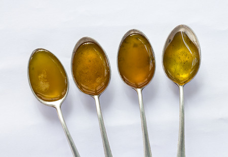 four species: Above all four species in a teaspoon of honey, which is placed on a white background.