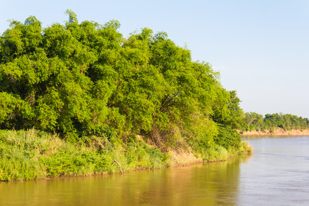 grassy knoll: View the middle of the river island of Thailand is a clump of trees and grass.