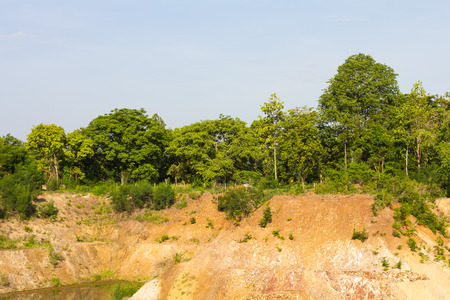 Many trees growing on barren shores of the canal, soil erosion, water in the mine.