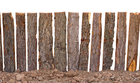 isolate: Isolates of fence poles made from tree bark slot is located on the ground floor, simple insecurity.